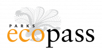 ECO PASS with logo